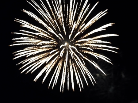 FONNS Fireworks 2021